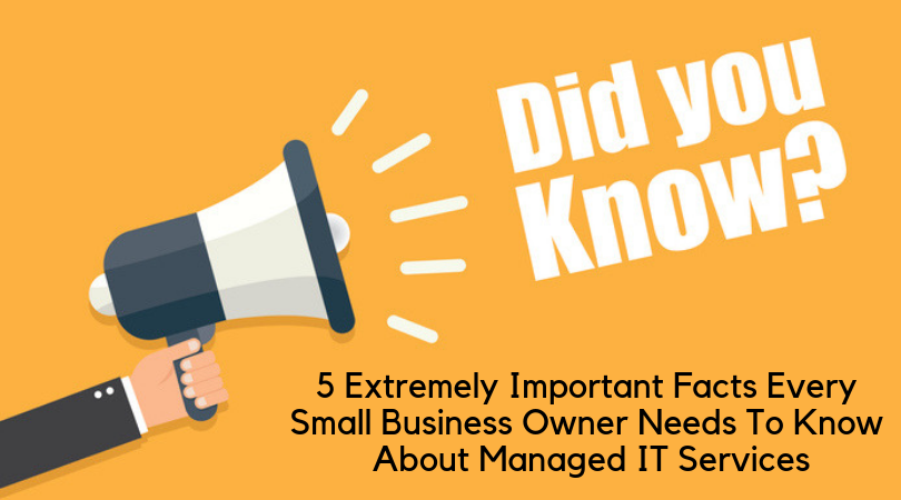 5 Extremely Important Facts Every Small Business Owner Needs To Know About Managed IT Services